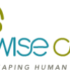Wise Cells Learning Solutions LLP